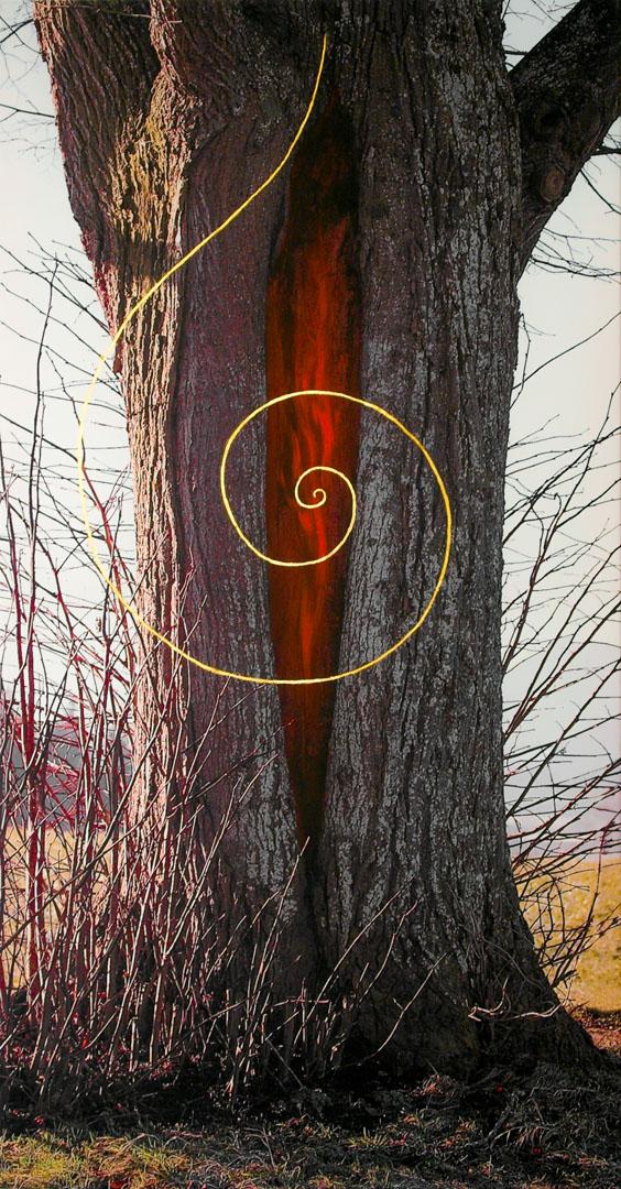 """Ingrid Wischka: Himmel und Erde berühren sich   Fotodruck auf Leinwand, Farbe, Blattgold; 80 x 160 cm; 900,00 €    * 1962 in Altötting; Goldschmiedemeisterin; seit 1993 selbstständig, eigene Werkstatt und Verkaufsraum; Schmuckgestaltung mit Edelmetallen, Perlen und Edelsteinen; seit 2000 Objekte aus Stein, Holz und anderen Materialien; Gestaltung inspiriert durch Zen-Künste und Taoismus; lebt und arbeitet in Wald/Alz   """"Hier repräsentiert der Baum, der aus der Erde wächst, Mutter Erde, das Weibliche, das Stoffliche. Die Blattgoldspirale steht für das Geistige, für Vater Himmel, das Männliche."""""""